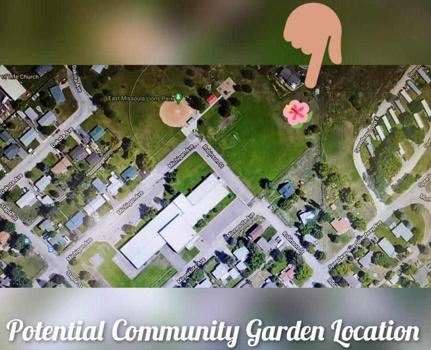 Community Garden Dreams